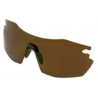 Evolution Glasses Dark Brown